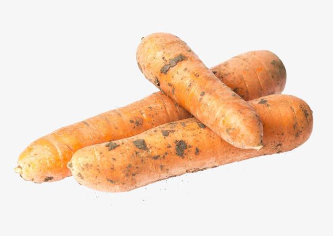 Морковь2431614