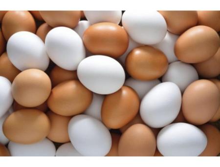 Яйца3169084