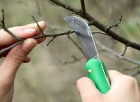 Ножи садовые6827668